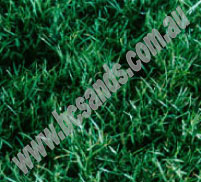 Turf Winter Green Couch m2