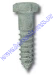 Coach Screw 10 x 85mm (Box=50)