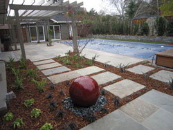 Mulch saves water 